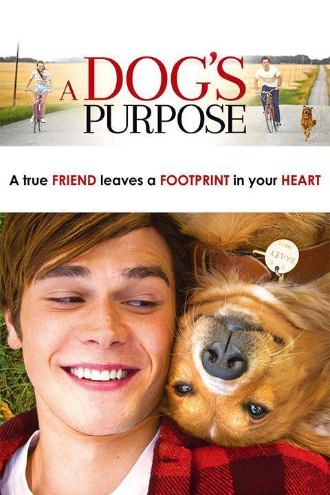 Recensie A Dog's Purpose (2017)