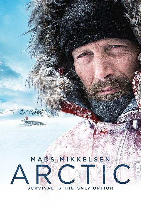 Recensie Arctic (2019)