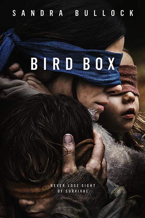 Recensie Bird Box (2018)