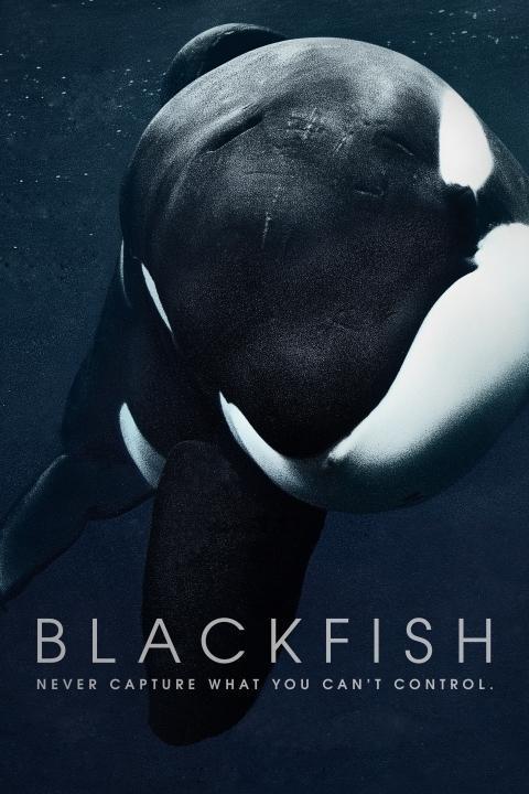 Recensie Blackfish (2013)