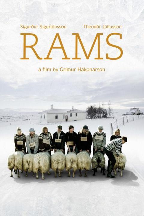 Recensie Rams (2015)