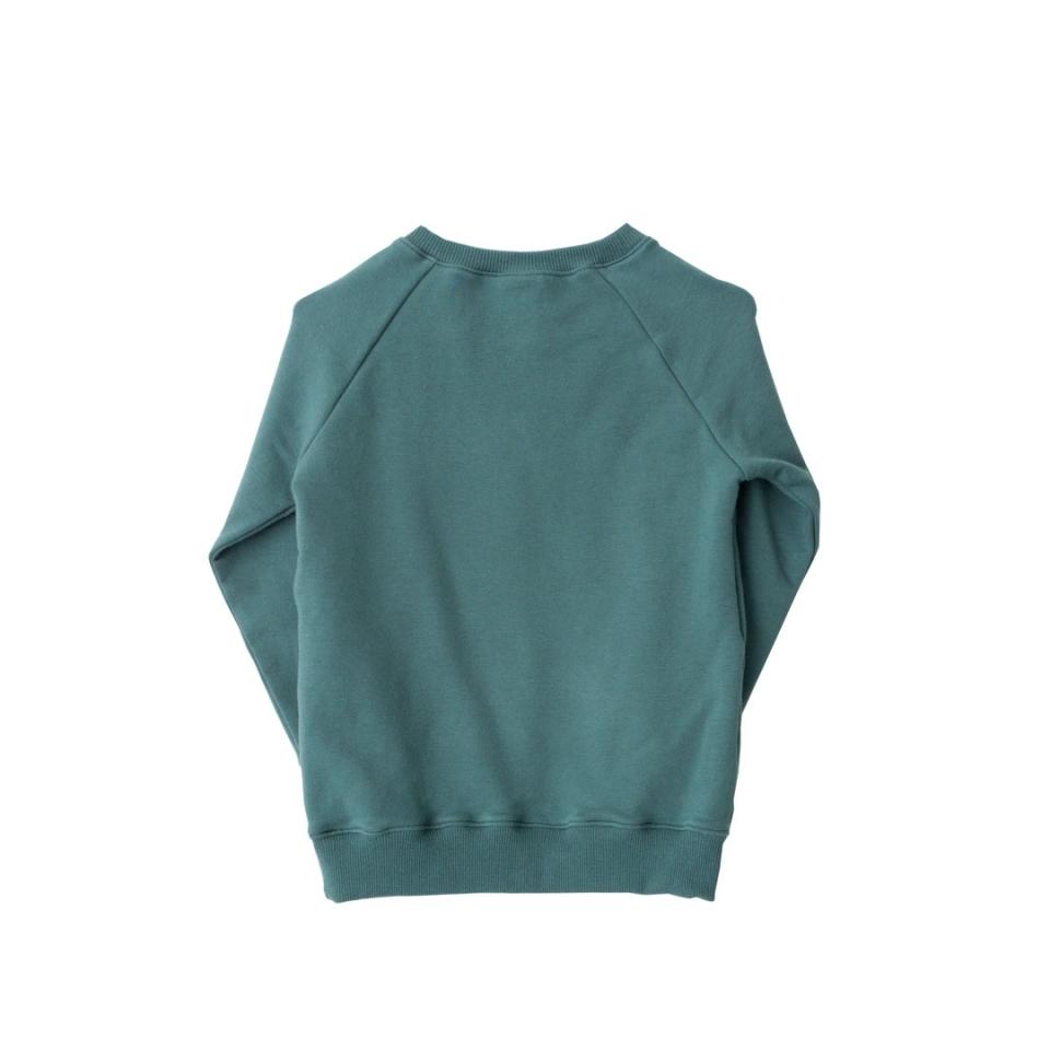 Sweater(jurk) Vosje achterkant