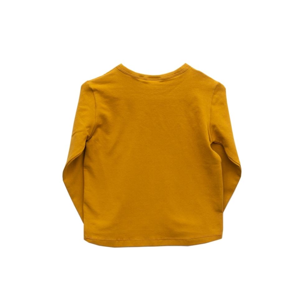 Shirt Klessebes achterkant