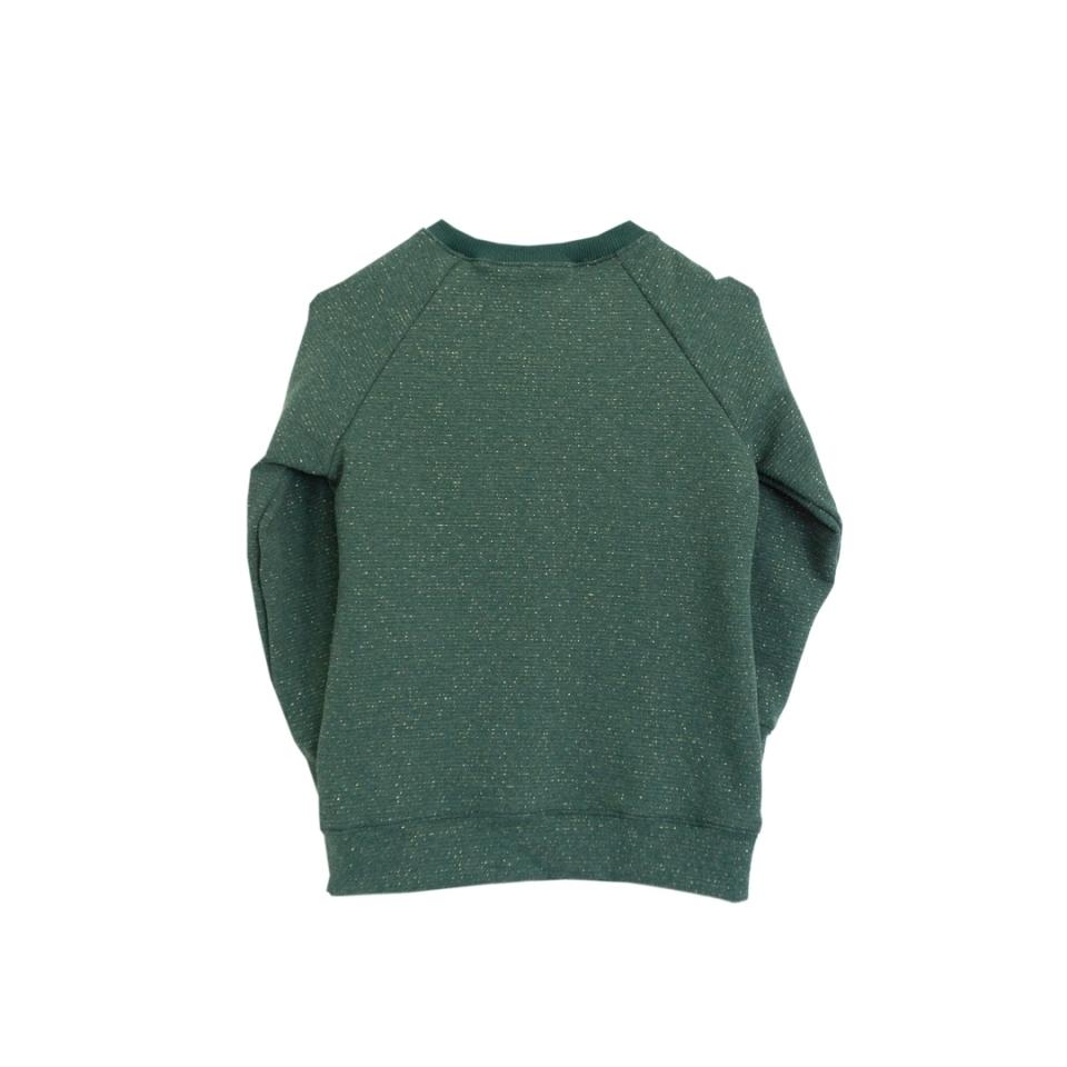 Feest sweater met strikje achterkant