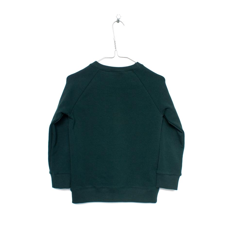 Sweater Deugniet donkergroen achterzijde