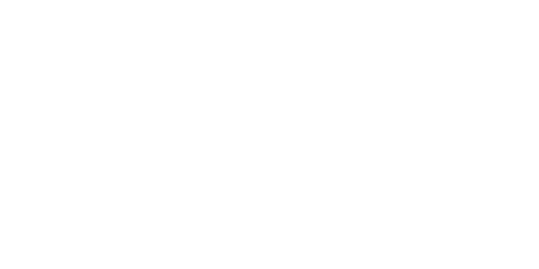 Mammoet Ferry Transport
